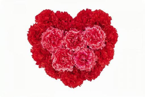 Carnation fluffy heart 1