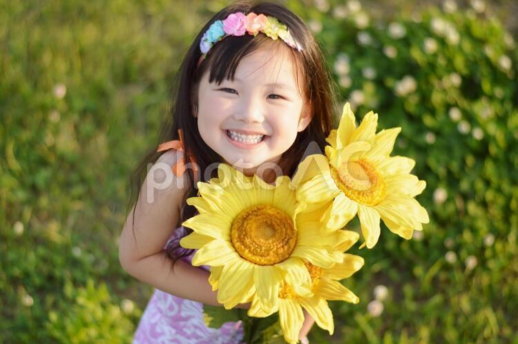 向日葵とこどもの写真