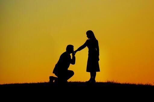 Proposal image 1