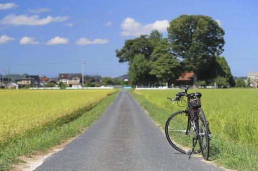 Bicycle and countryside