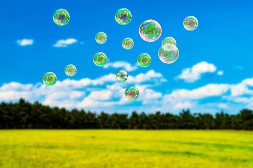 Soap bubbles (PSD)