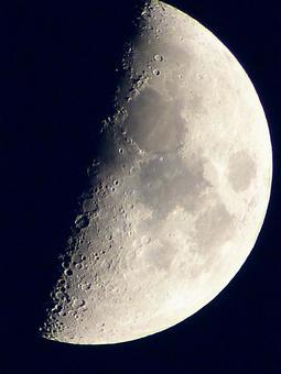 Moon X (age 7.6)