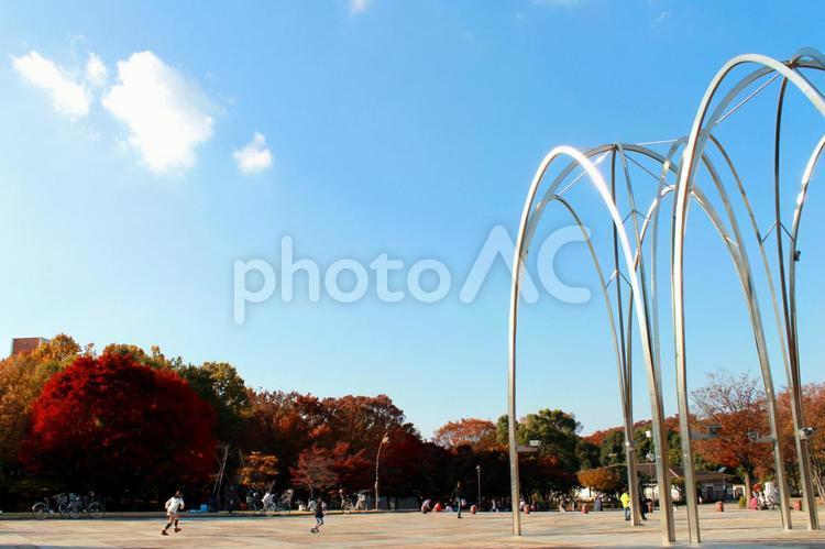 秋の光が丘公園の写真