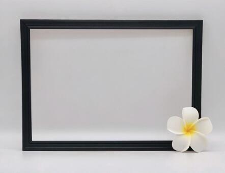 Frame plumeria