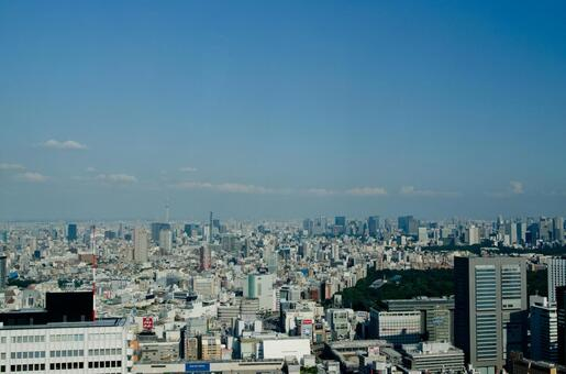 도쿄 풍경 9