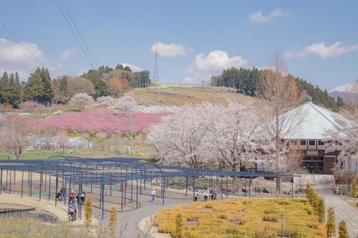 Nakanojo Garden in spring