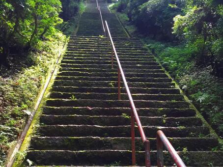 長滿苔蘚的樓梯