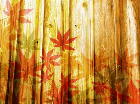Wood grain autumn leaves 椛 background 02