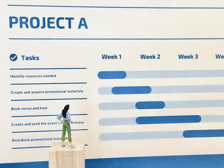 Check progress with project management (Gantt chart)
