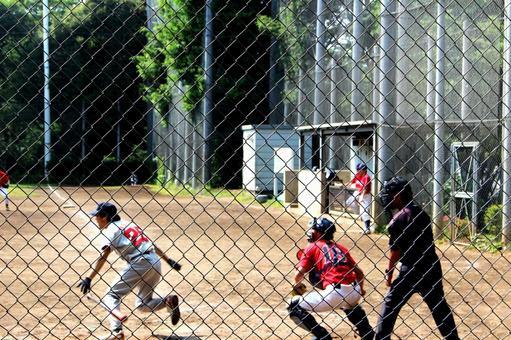 Watching the grass baseball