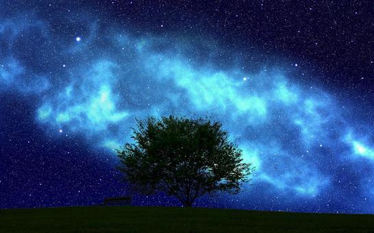 星星在草地上閃耀