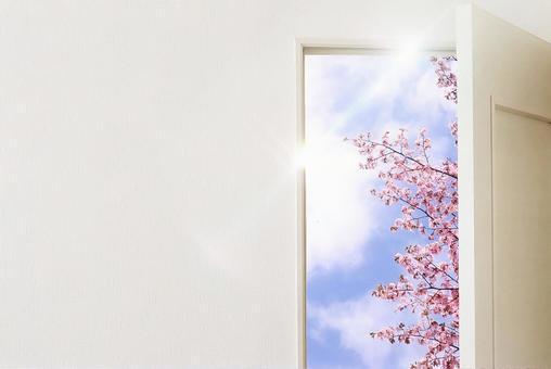 새 생명의 문 1 신 생활 이미지 문 문 벚꽃