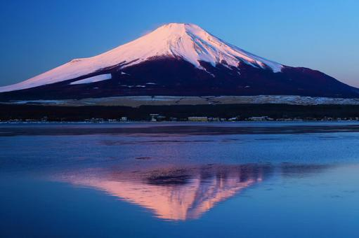 Beautiful Beni Fuji_Working at Lake Yamanaka