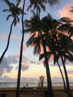 Hawaiian landscape (115) beach at sunset