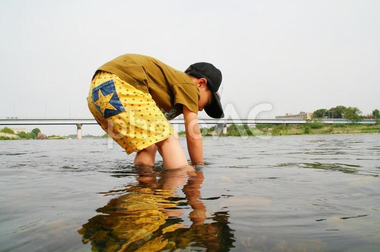 子供 川遊び 川 魚 河原の写真