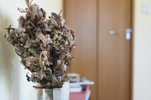 Dry Bouquet / Dry Flower