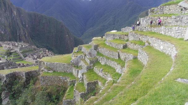페루 안데스 산록 마추 픽추 유적 계단식