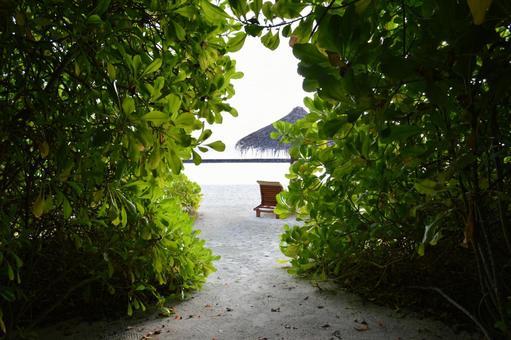 Beach 1 in Maldives