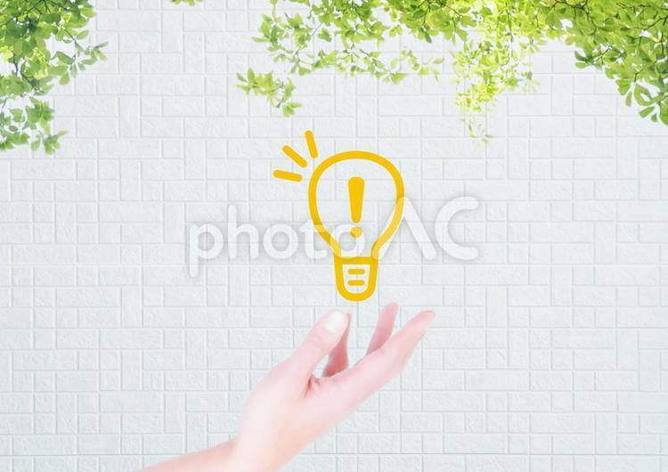 電球 アイデア 省エネの写真