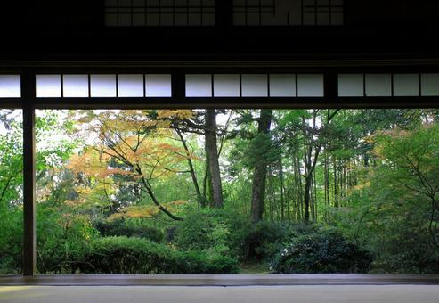 View the garden from Takiguchiji and Hondo