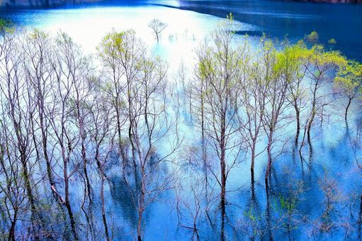 Autumn fan lake