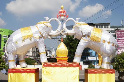 豪华大象的图片