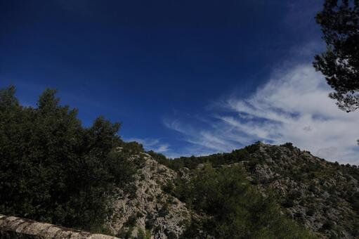 Green landscape of Majorca 9