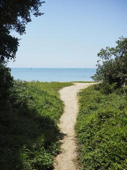 백명 해변으로가는 길 (오키나와 현 난 죠시 타 마구 스쿠 백명)