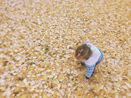 Children playing with yellow fallen leaves
