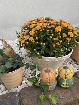 Halloween garden 3