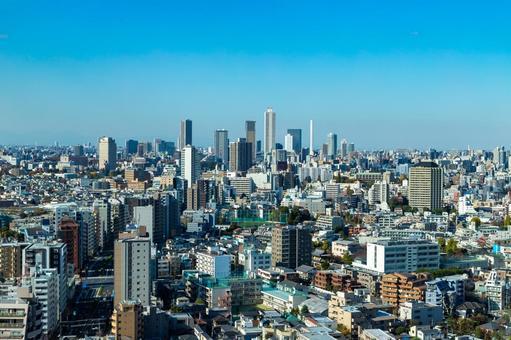 도쿄의 거리를 전망