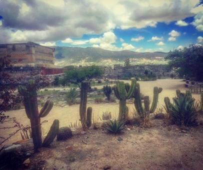 멕시코 땅