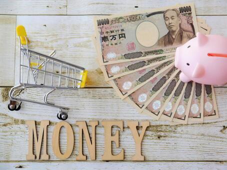 MONEY / Money (17) Money / Piggy Bank / Shopping Cart