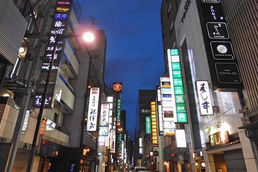 Ginza club district neon at night (near Ginza 7-chome)