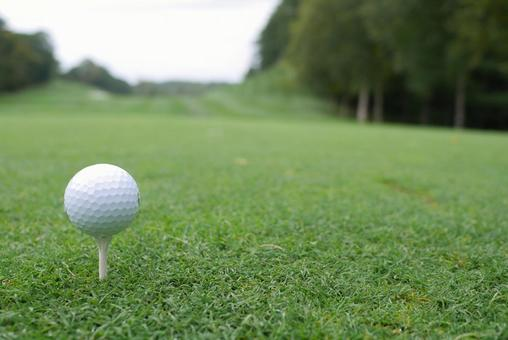 Golf course golf ball tee up