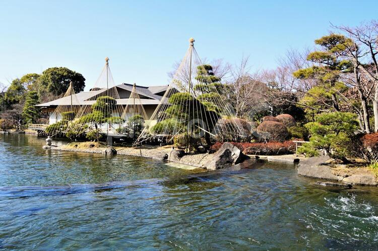 平成庭園の写真