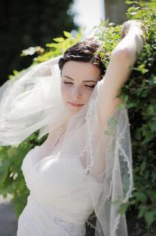 婚礼323