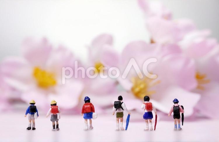 春の小学生の写真