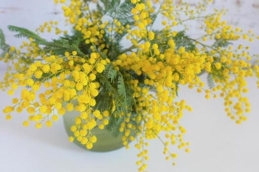 [Interior flower] Wood background and mimosa i