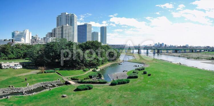 快晴の新二子橋から 多摩川の兵庫島公園の写真