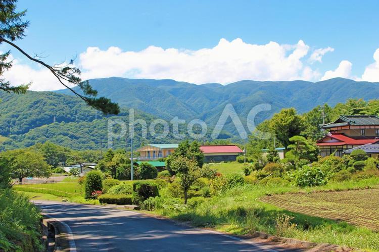 夏の田舎の風景の写真