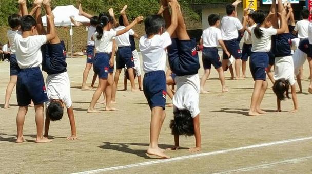 Team gymnastics gymnastics
