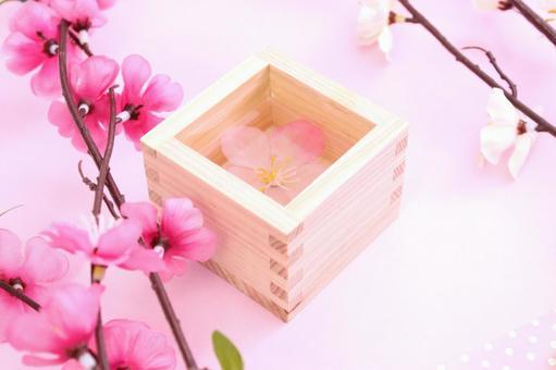 Masu and plum blossoms 3