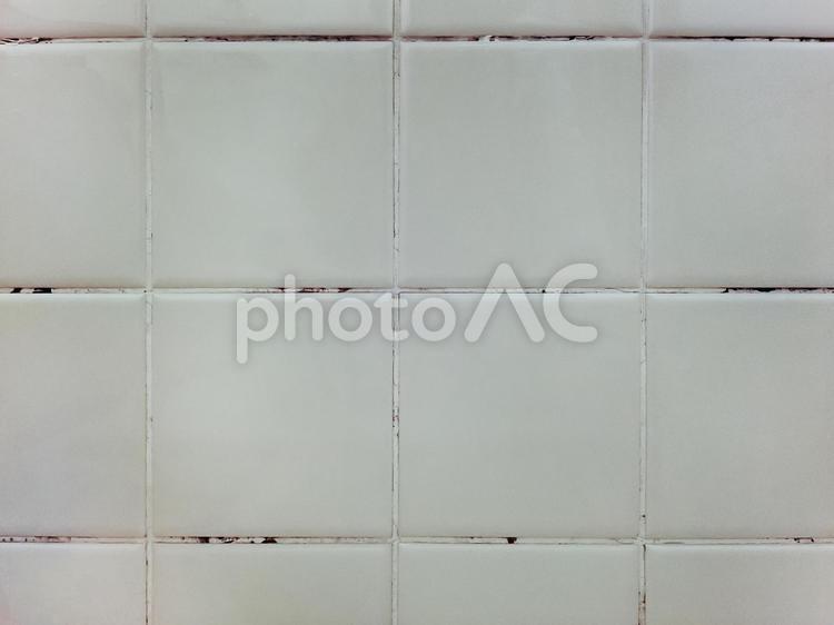 汚れたタイルの目地に発生した黒カビの写真