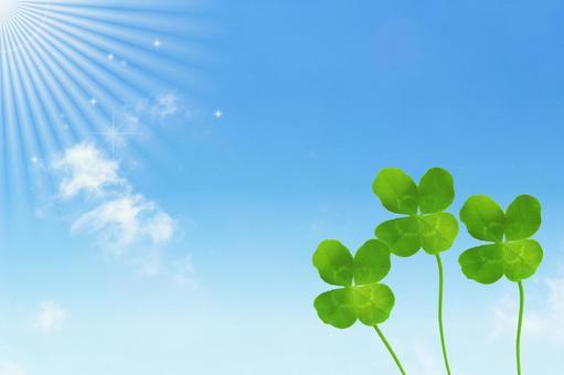 Four leaf clover and blue sky