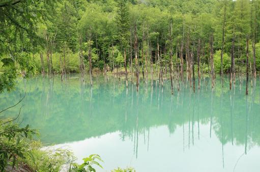푸른 연못 4