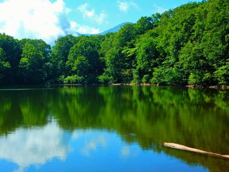 Myoko · Summer Saisan Pond