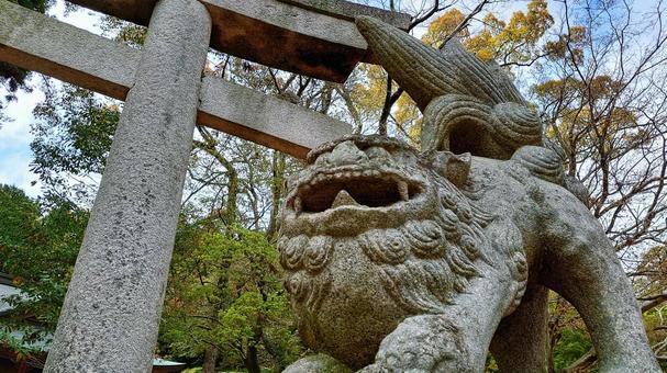 Guardian dogs and torii gates at Usuyama Hachiman Shrine