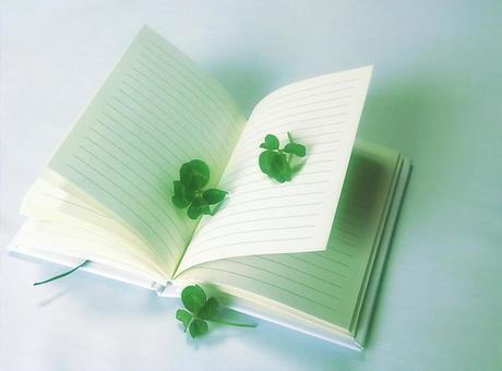 Four leaf clover and a diary 2