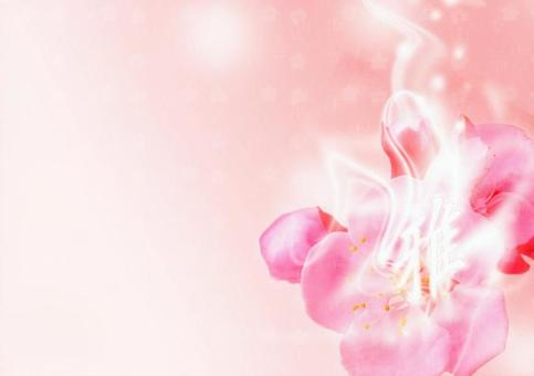 Ya cherry tree desktop picture